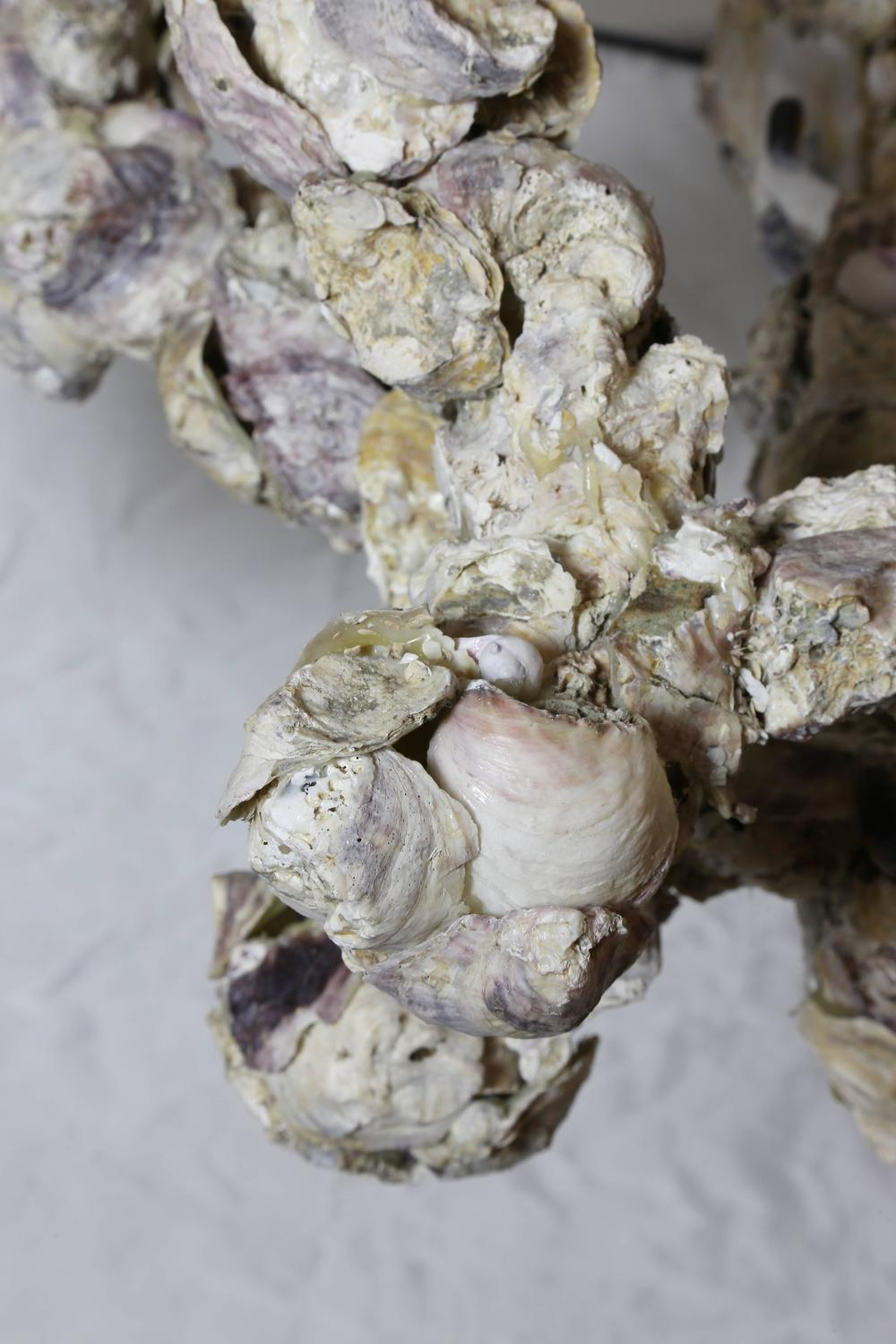 Large Oyster Shell Five Arm Chandelier At 1stdibs
