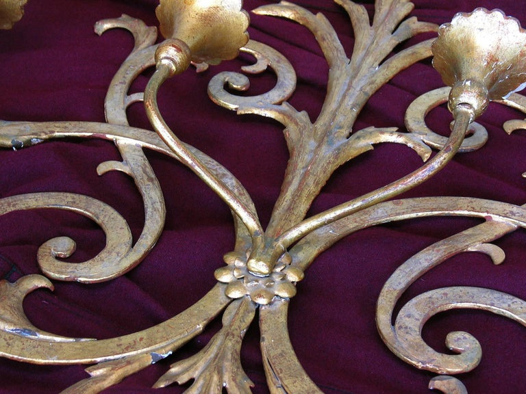 20th Century Large Italian Gilt Wrought Iron Six-Light Wall Candle Sconce For Sale
