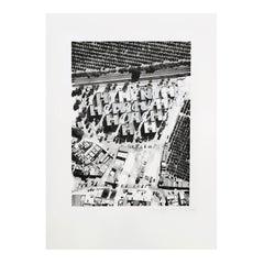 Diane Guyot de Saint Michel Cantillana Artwork, 2017