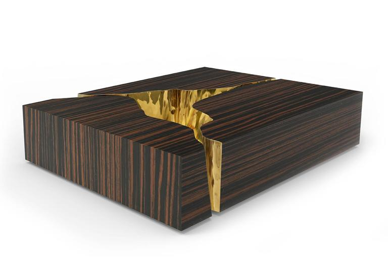 Paradise Coffee Table in Mahogany and Polished Brass For Sale 3