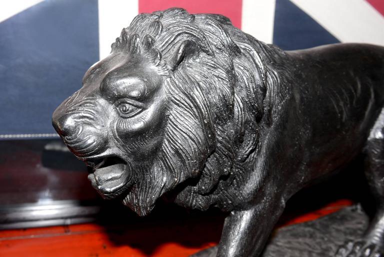 Contemporary Lion Sculpture in Bronze Black Finish For Sale