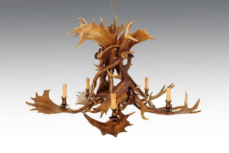 Scottish Reindeer Master Chandelier with Five Partridge Feather Shades For Sale