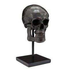 Skull Sculpture in Antique Black Brass Style