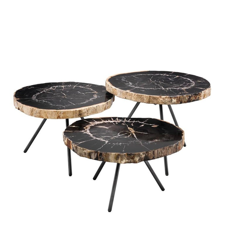 Petrified Wood Slices Set Of Three Coffee Table For Sale At 1stdibs