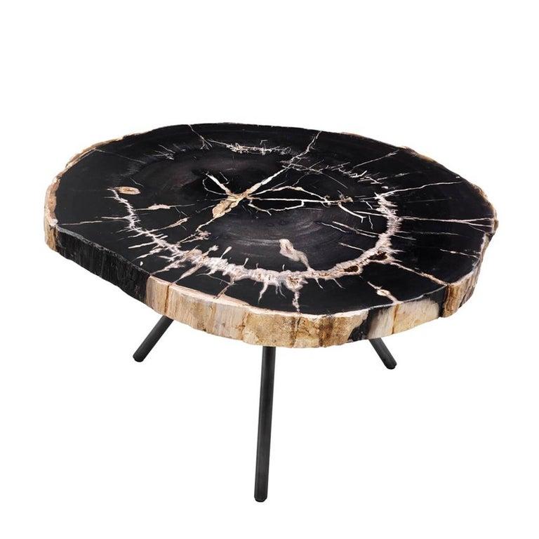 Umstead Oval Engineered Wood Coffee Table: Petrified Wood Slices Set Of Three Coffee Table For Sale