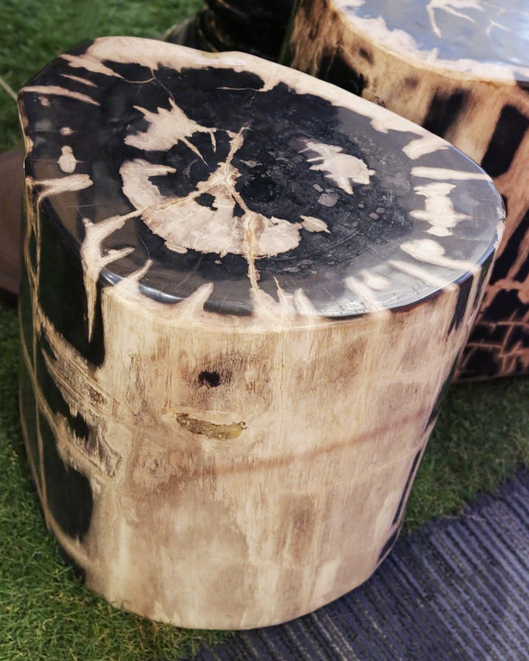 Indonesian Petrified Wood Set of 2 n°A Side Table For Sale