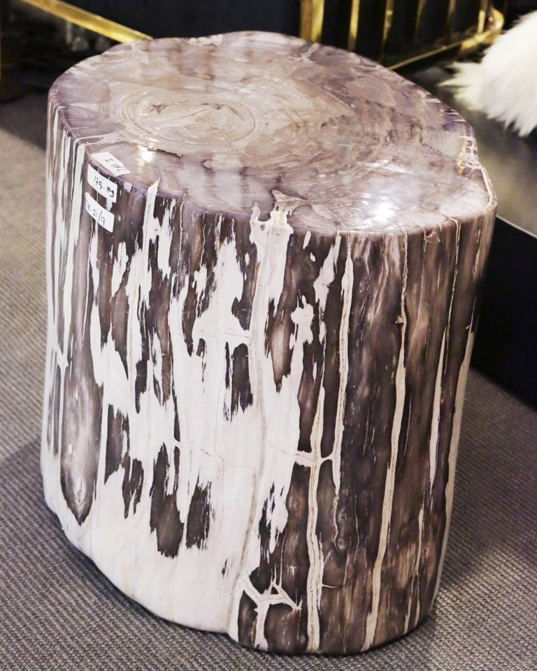 Petrified Wood Set of 2 n°B Side Table For Sale 2