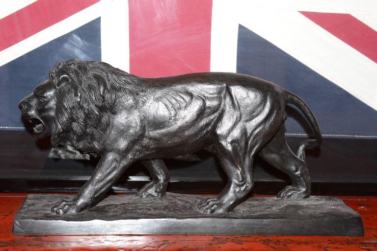 Sculpture lion in solid bronze black finish.