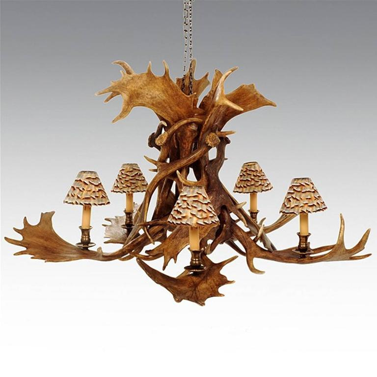 Chandelier reindeer master with five reindeer antlers, in vintage brass finish, five bulbs and five partridge feather, lampshade.