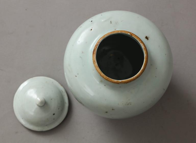 Ming Dynasty Porcelain Vase For Sale 1