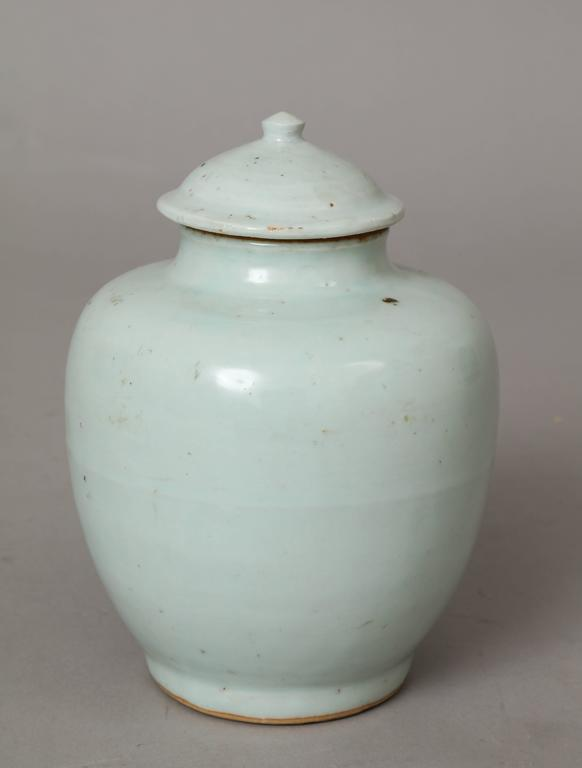 Chinese Ming Dynasty Porcelain Vase For Sale