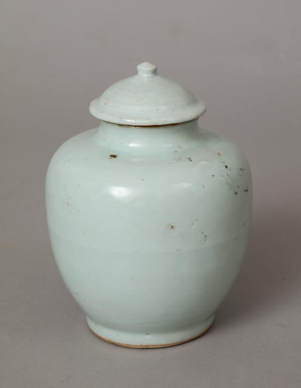 Ming Dynasty Porcelain Vase For Sale 3