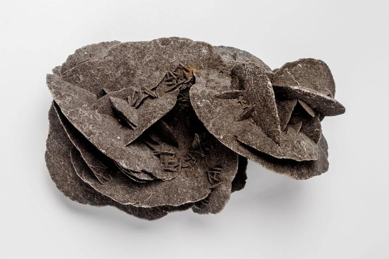 Tunisian Sculptural Paperweight Mineral Desert Rose For Sale