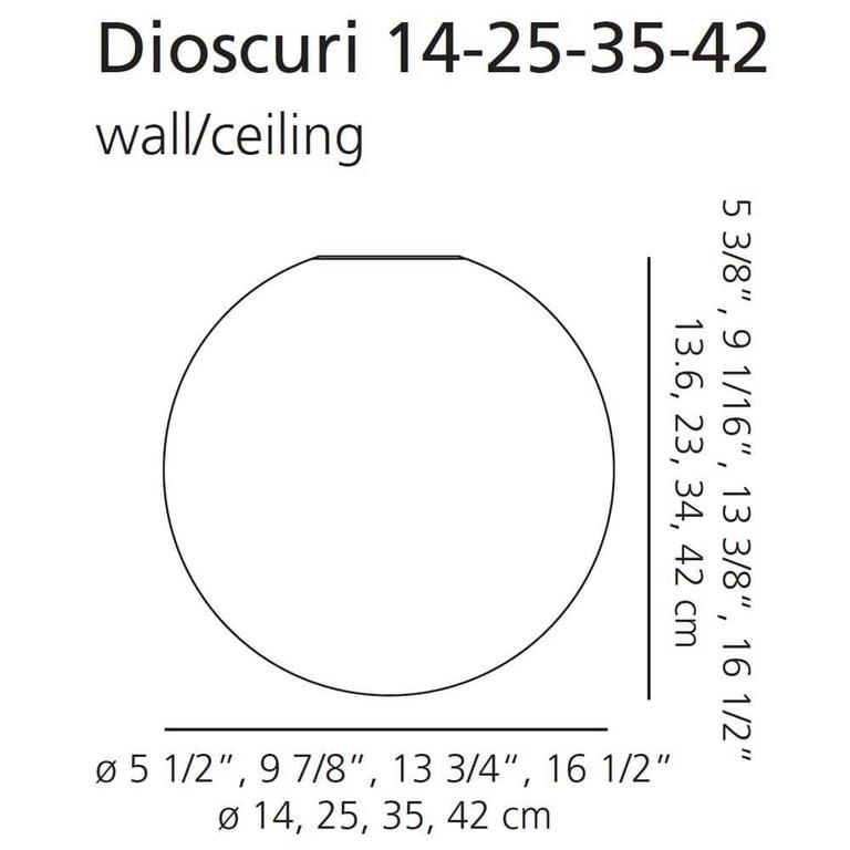 Lacquered Michele De Lucchi Dioscuri 42 Outdoor Wall or Ceiling Light For Sale