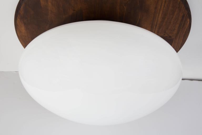 Enameled Large Sergio Mazza 'Magnolia' Ceiling Lamp for Quattrifolio, circa 1971 For Sale