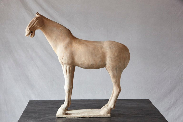 Impressive and very decorative large terracotta horse modeled in the style of the sculptures from the Tang dynasty.