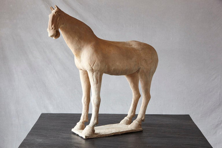 English Large Terracotta Tang Dynasty Style Horse Sculpture For Sale
