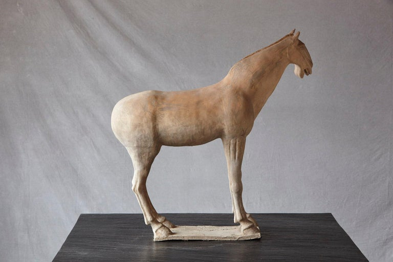 Late 20th Century Large Terracotta Tang Dynasty Style Horse Sculpture For Sale