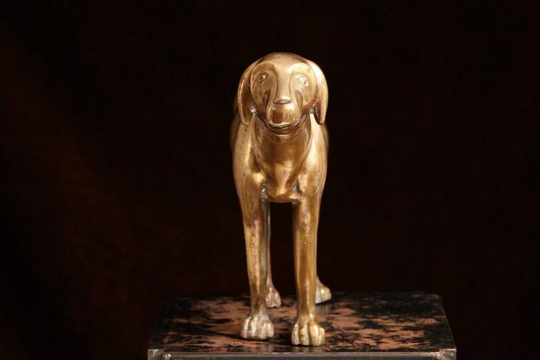 Large Standing Brass Pointer Hunting Dog Door Stop 5