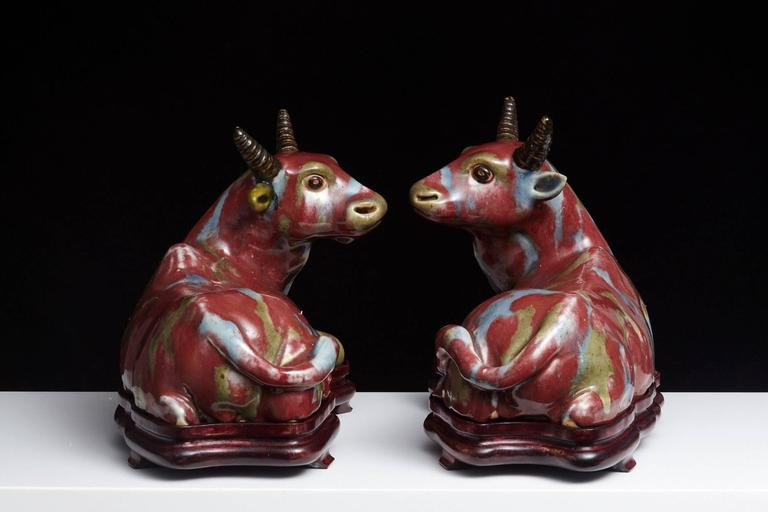 Pair of Chinese Porcelain Water Buffalos on Conforming Rosewood Stand 5
