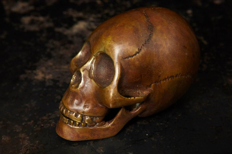 Beautiful detailed bronze cast of a human skull. Can serve as table statue on a metal stand or as a paper weight.