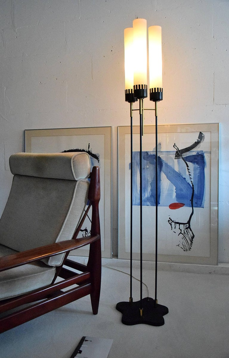 Mid-20th Century Stilnovo Mid-Century Floor Lamp For Sale