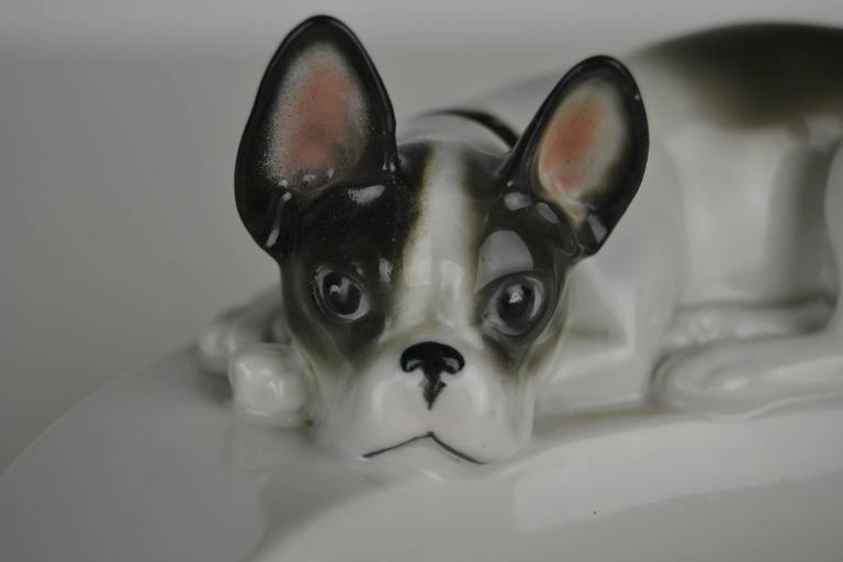 For the French bulldog lover or owner,  a Porcelain Ashtray with a Frenchie on top.  Made by the porcelain and faience factory Pfeffer Gotha, Germany , Mid 20th Century. According to the stamp produced between 1934 and 1942.  The factory has been