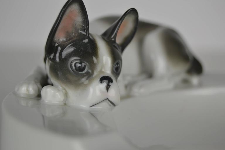 Porcelain Ashtray with French Bulldog Dog by Pfeffer Gotha , Germany  For Sale 2