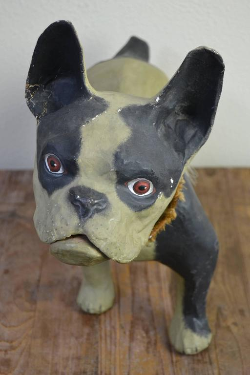 Lovely  French Bulldog Child's toy. You can open his mouth with the pull mechanism. Made of paper mache - papier mâché with collar in leather and coconut husk. Bullie - Frenchie - Dog Collectible - Old Paper Mache Objects. Showcase objects - Desk