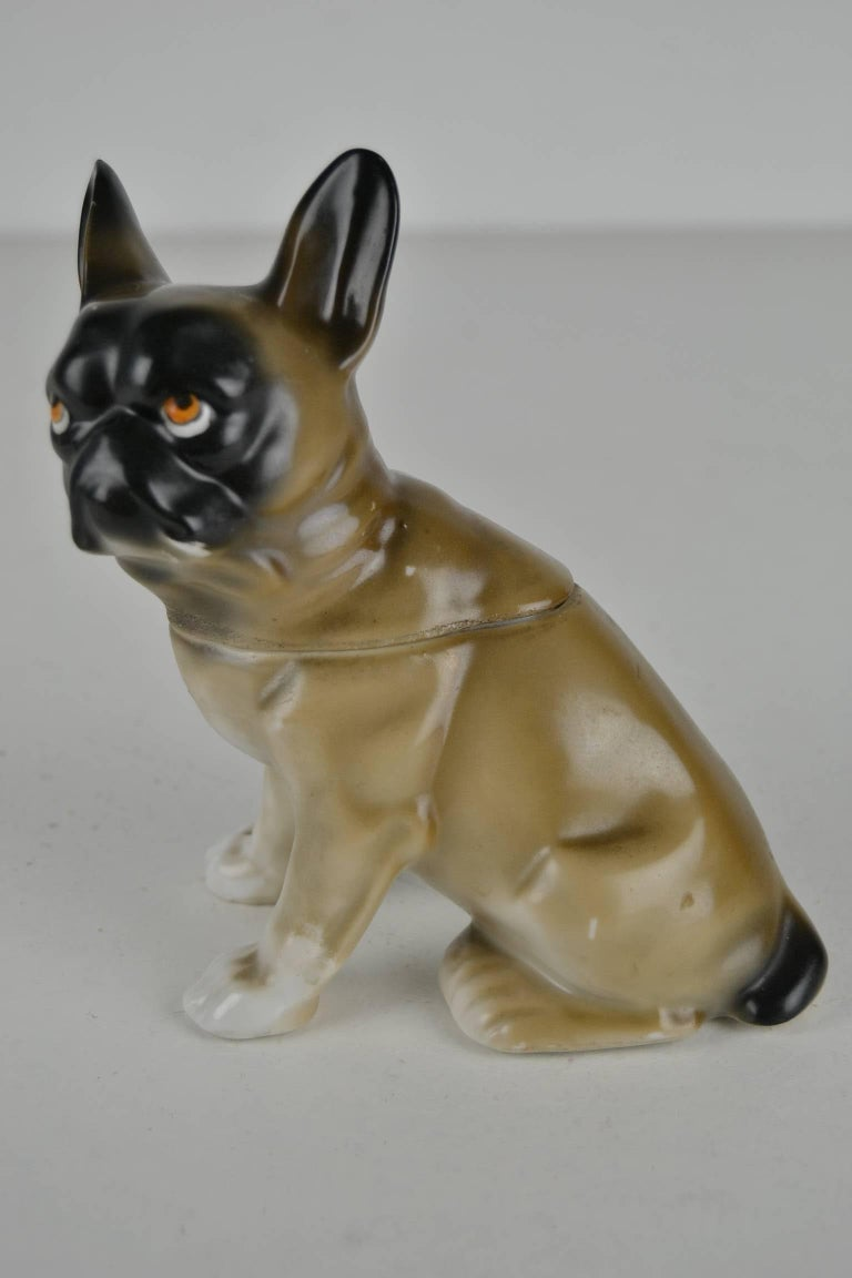 20th Century 1930s Antique German Porcelain French Bulldog Humidor For Sale