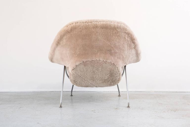 Mid-20th Century Saarinen Mid-Century Modern Womb Chair by Knoll Reupholstered in Shearling