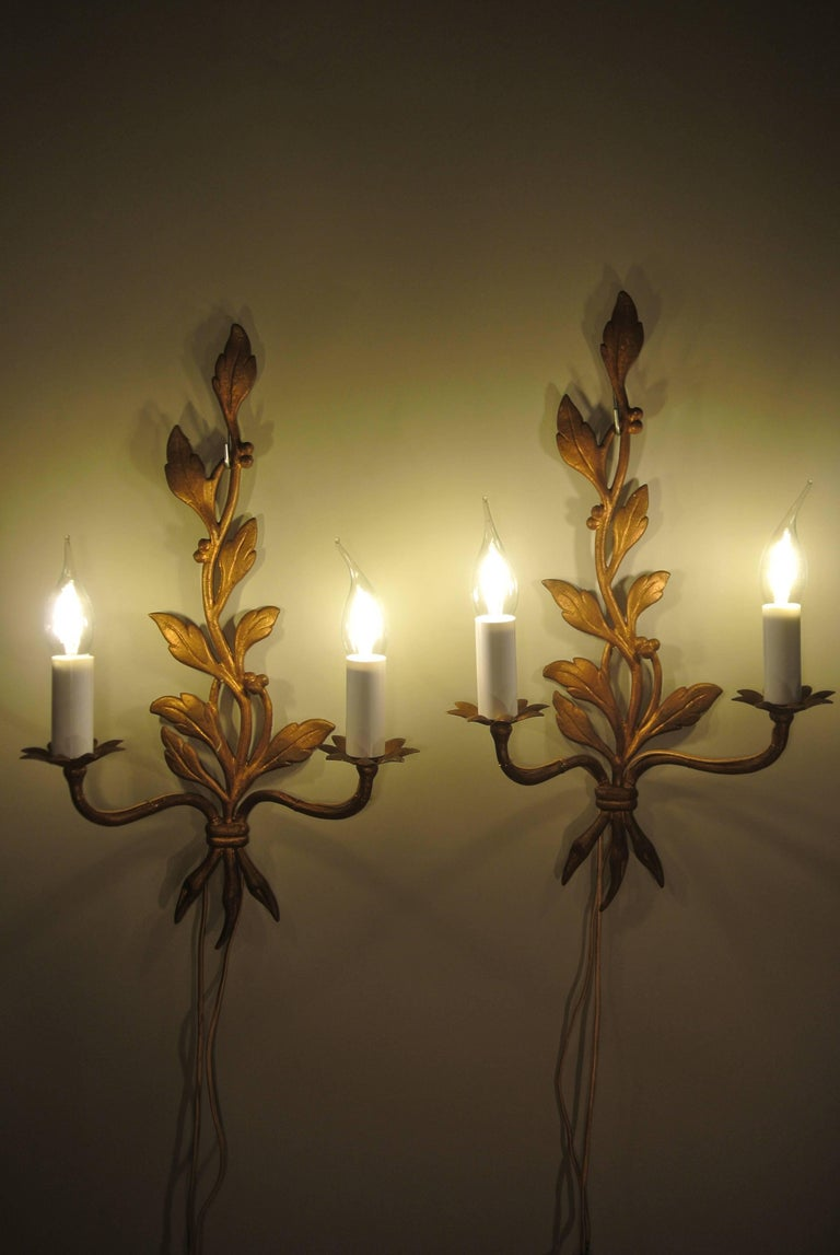 French Pair of Mid-Century Modern Gold Gilt Bronze Sconces in a Leaf Design, circa 1960 For Sale