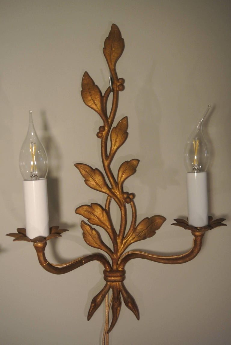 Pair of Mid-Century Modern Gold Gilt Bronze Sconces in a Leaf Design, circa 1960 For Sale 2
