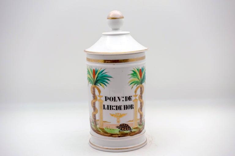 Late 19th Century 19th Century Palm Tree Pharmacy Jars For Sale