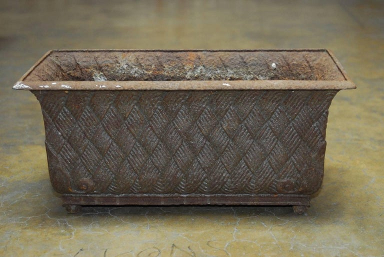 Pair of English Cast Iron Rectangular Jardinieres or Planters In Excellent Condition For Sale In Oakland, CA