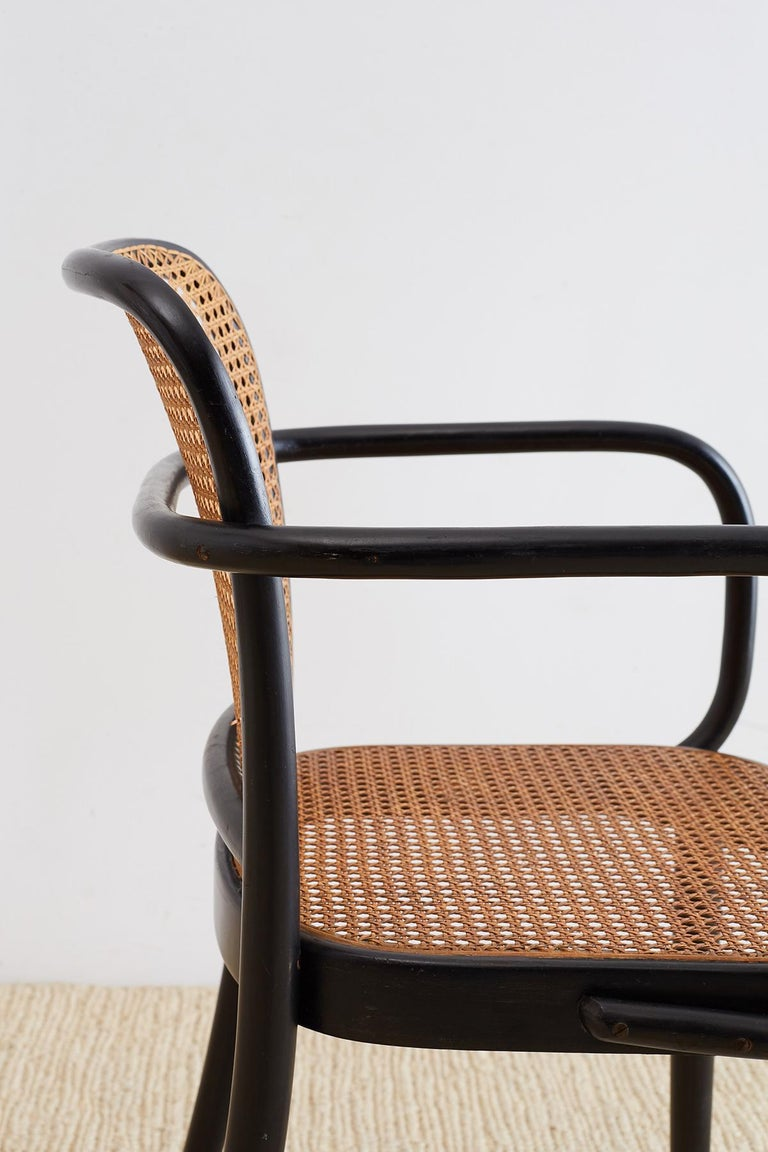 Josef Hoffman for Stendig Black Bentwood Prague Chairs For Sale 6