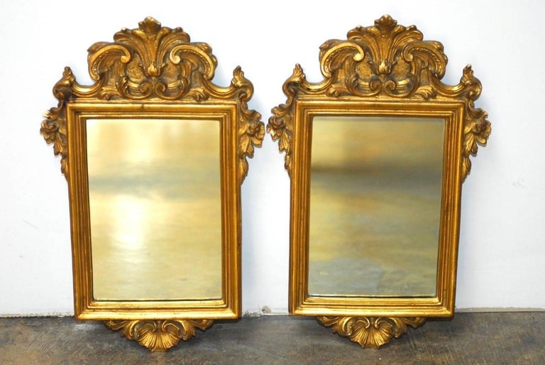 Opulent pair of Italian giltwood and gesso mirrors made in the Rococo taste. Each having a scroll and acanthus decorated frame centering a rectangular looking glass. In excellent condition given age and use.