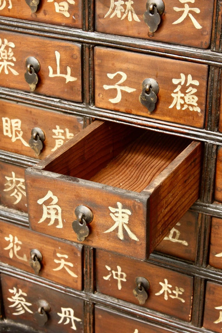 Pair of 19th Century Qing Dynasty Apothecary Cabinets or Chests  For Sale 3