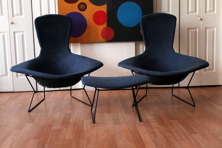 Authentic Vintage Harry Bertoia For Knoll Bird Chairs And