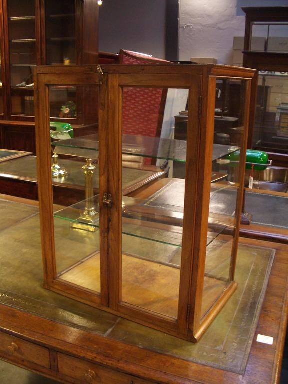 Exceptional Beautiful Small Oak Display Cabinet With Two Doors And Two Shelves. In  Completely Original Condition
