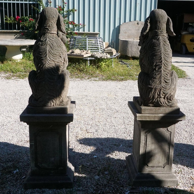 Early 20th Century, a Pair of Tuscan Hunting Dogs in Limestone In Good Condition For Sale In West Palm Beach, FL