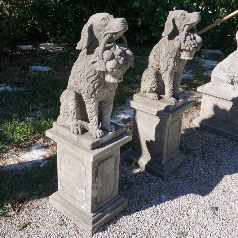 Italian Early 20th Century, a Pair of Tuscan Hunting Dogs in Limestone For Sale