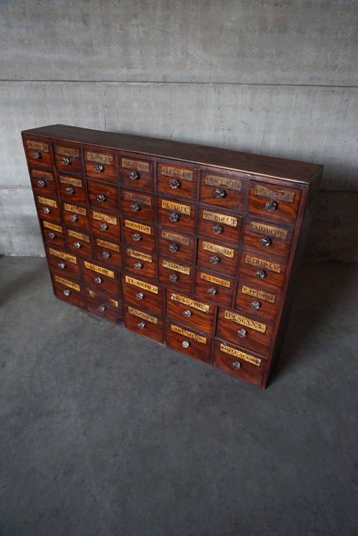 Antique Mahogany Apothecary Cabinet Bank Of Drawers