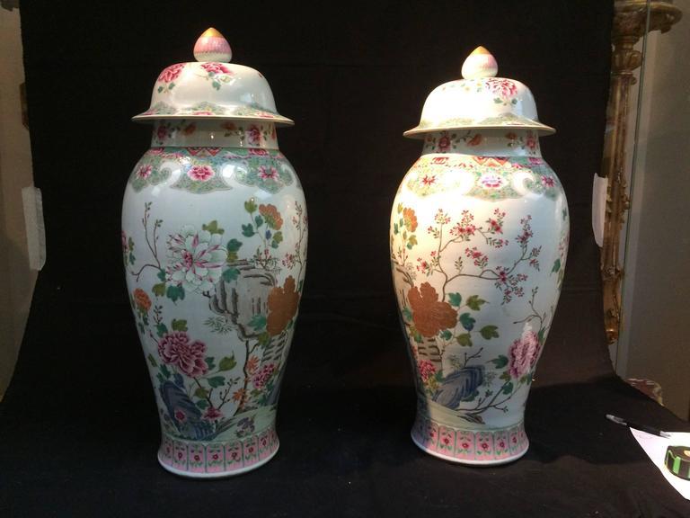 Pair Of Fencai Chinese Ceramic Vases From 19th Century At