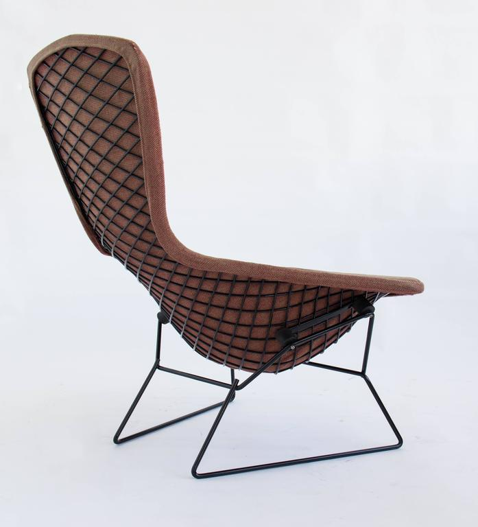 Bird Chair By Hary Bertoia For Knoll At 1stdibs