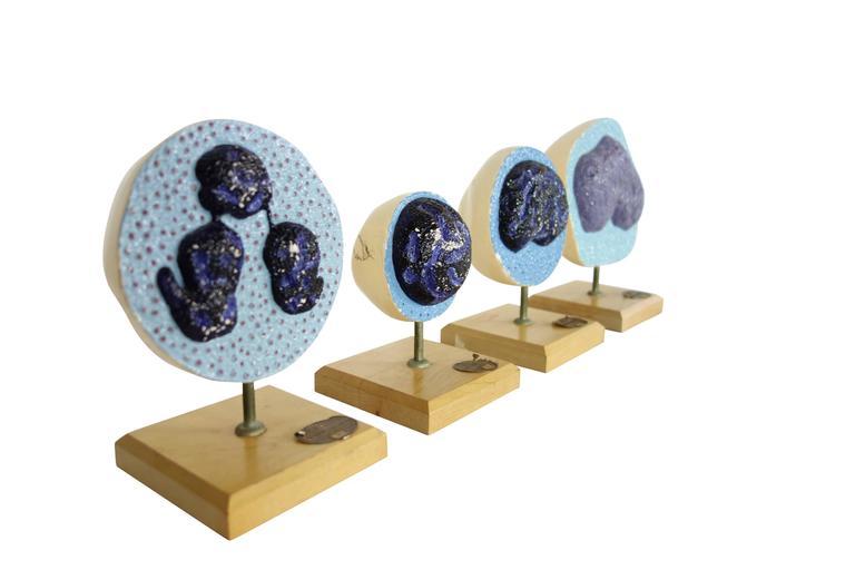 American Set of Four Mueller-Ward 3d Cellular Mitosis Biology Models Copyright, 1941