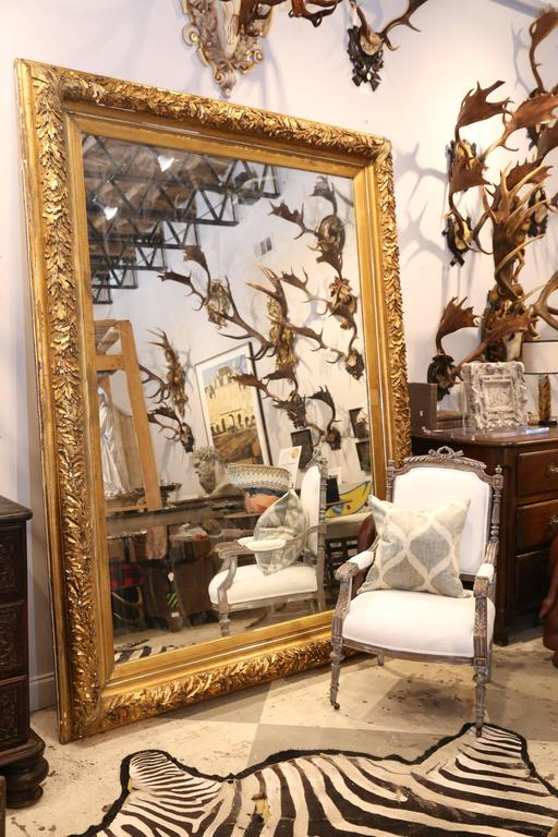 Large Antique French Carved Gilt Floor Mirror With Oak