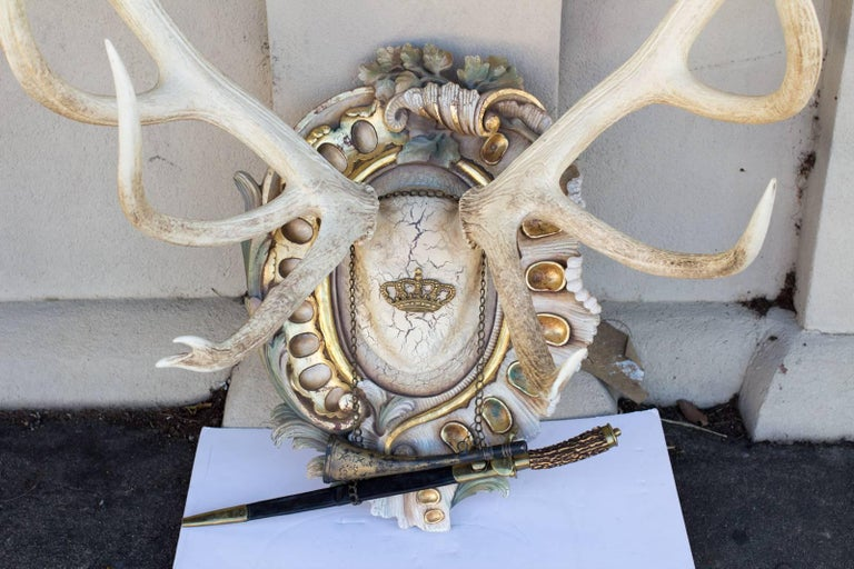 An exquisite hunting trophy from Emperor Franz Josef's castle at Eckartsau castle in the Southern Austrian Alps, this particular set of antlers once were mounted on the outside of the castle in the interior courtyard on sculpted heads and then later