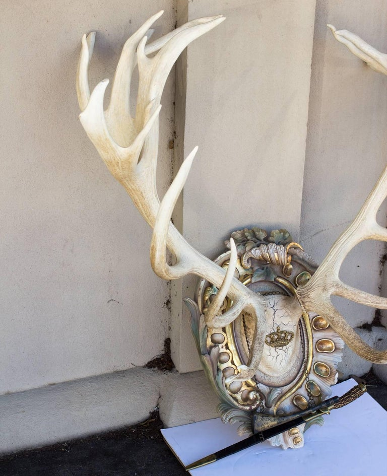 Bleached Habsburg Red Stag Antlers on Rococo Plaque with Kaiser & King Hunt Horn For Sale 1