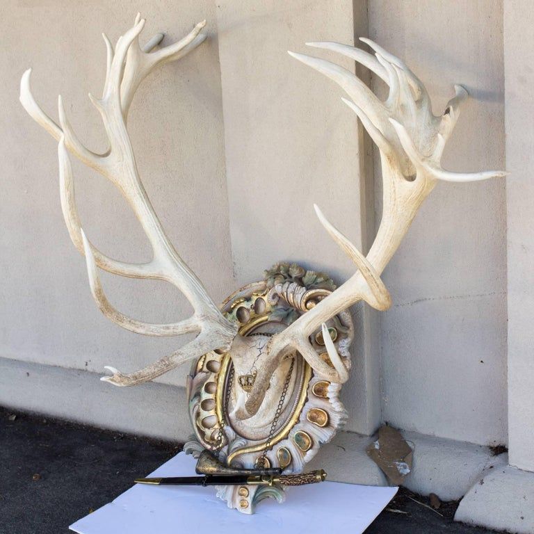 Bleached Habsburg Red Stag Antlers on Rococo Plaque with Kaiser & King Hunt Horn For Sale 2